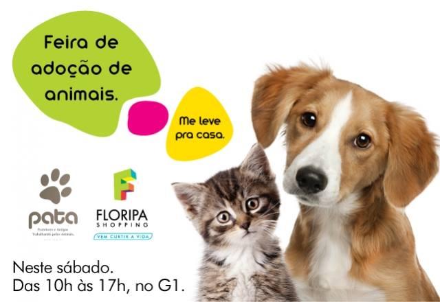 Feira de Adoção de Animais no Floripa Shopping