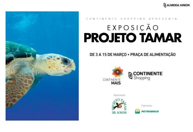 Exposição do Projeto Tamar
