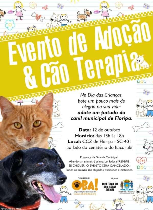 """Feira """"Adoção & Cão Terapia"""" com 118 cães e 4 gatos para adoção"""