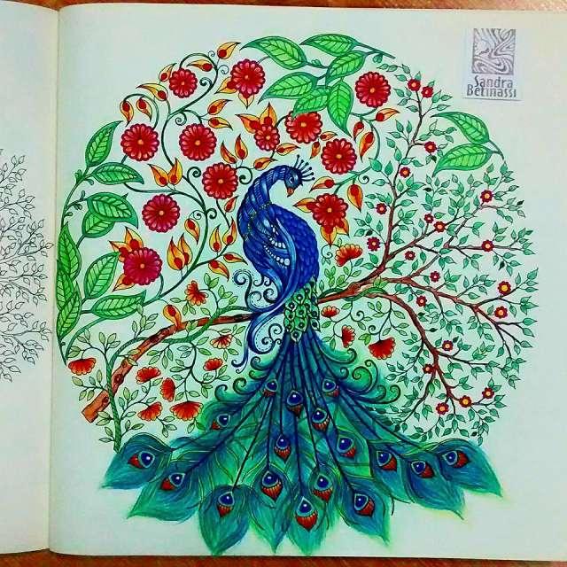 Encontro de fãs dos livros Jardim Secreto e Floresta Encantada