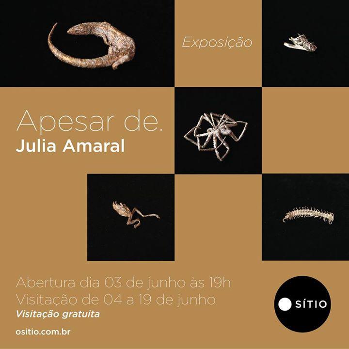 Apesar de. Exposição de Julia Amaral