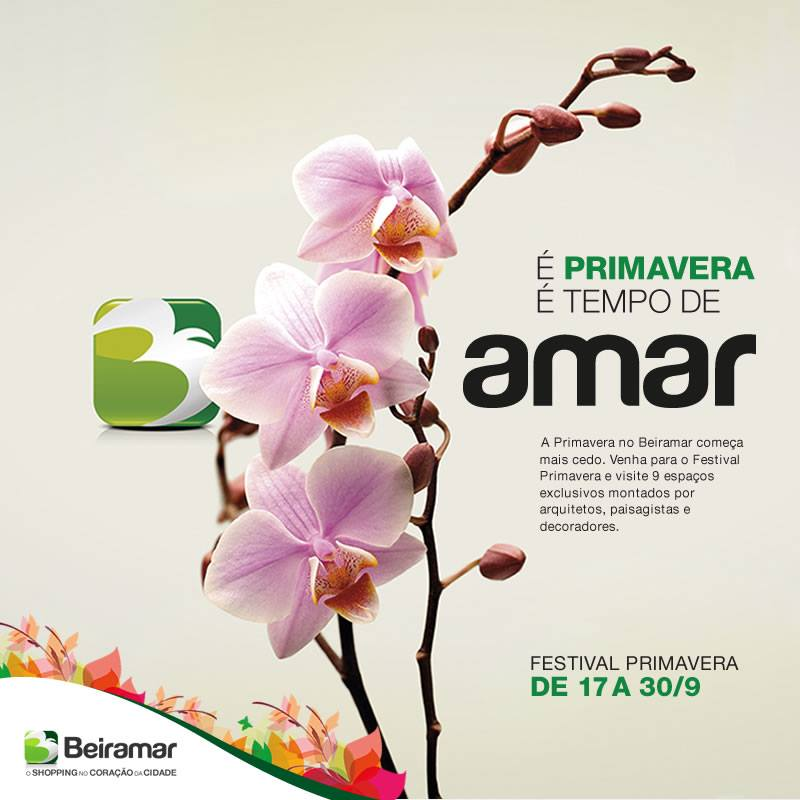"""Festival Primavera reúne plantas, flores, orquídeas, cactos e exposição """"Florescer"""""""