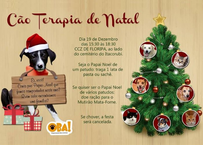 Cão Terapia Especial de Natal