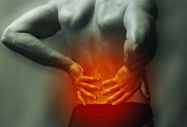 Palestra gratuita sobre cuidado com dor lombar crônica, com fisioterapeuta da Udesc