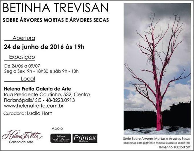 """Exposição fotográfica """"Sobre árvores mortas e árvores secas"""", de Betinha Trevisan"""