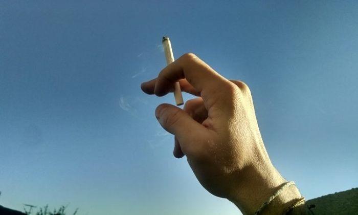 Dia Nacional de Combate ao Fumo terá série palestras gratuitas sobre tabagismo