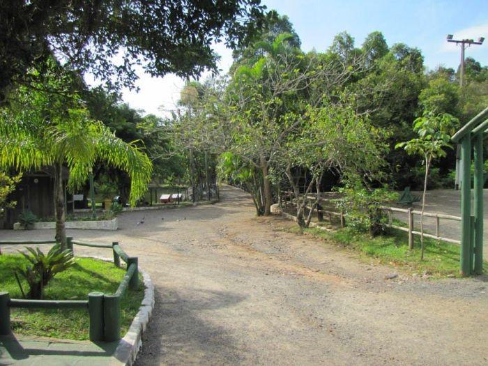 Aulão Gratuito Funcional e Yoga no Horto Florestal do Córrego Grande