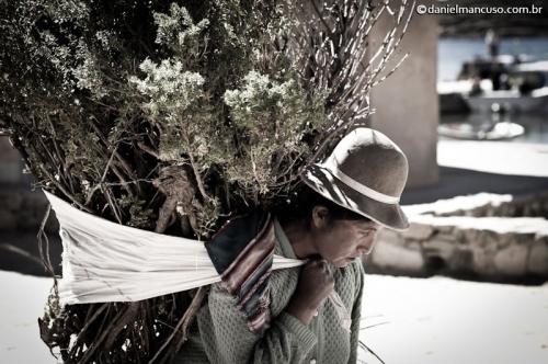 Exposições Depois da Água; Entre Nada e Lugar Nenhum; Lar, Salgado Lar; e América Andina